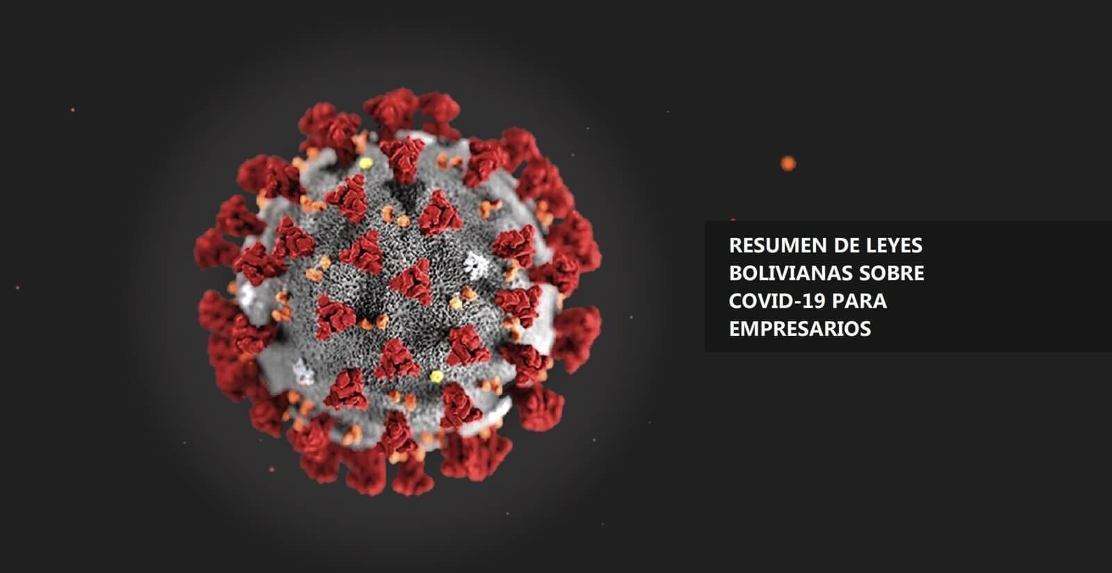 Leyes sobre el coronavirus