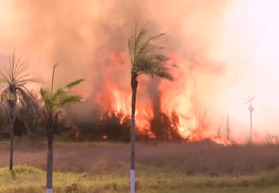 Fire near the Viru Viru airport