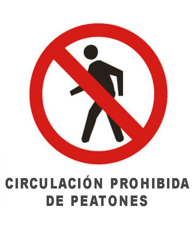 Coronavirus prohibición circulación Bolivia